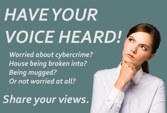 crime views.jpg