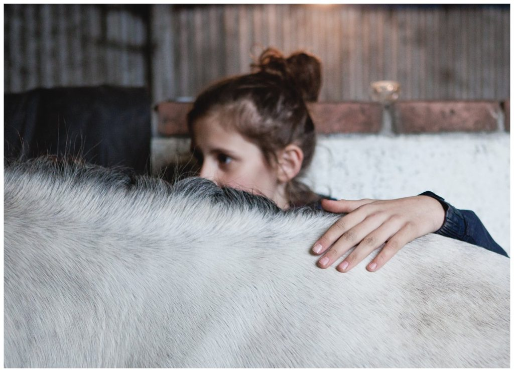 lifestyle-animal-horse-portrait_0016-1024x741.jpg