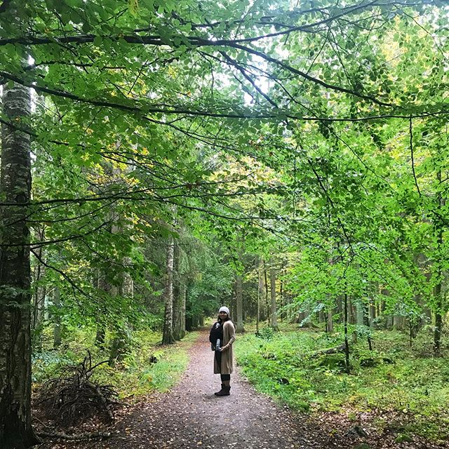 Shoulder season. Typically this time of year we're off somewhere tropical on a dive or surf trip before it's time to shred. With the new babe and transition to parenthood it's been great to stop a moment and enjoy our first autumn in many years, and in the Swedish forest nonetheless. Trolls and Faeries not pictured. #outsidebetter #nofilter