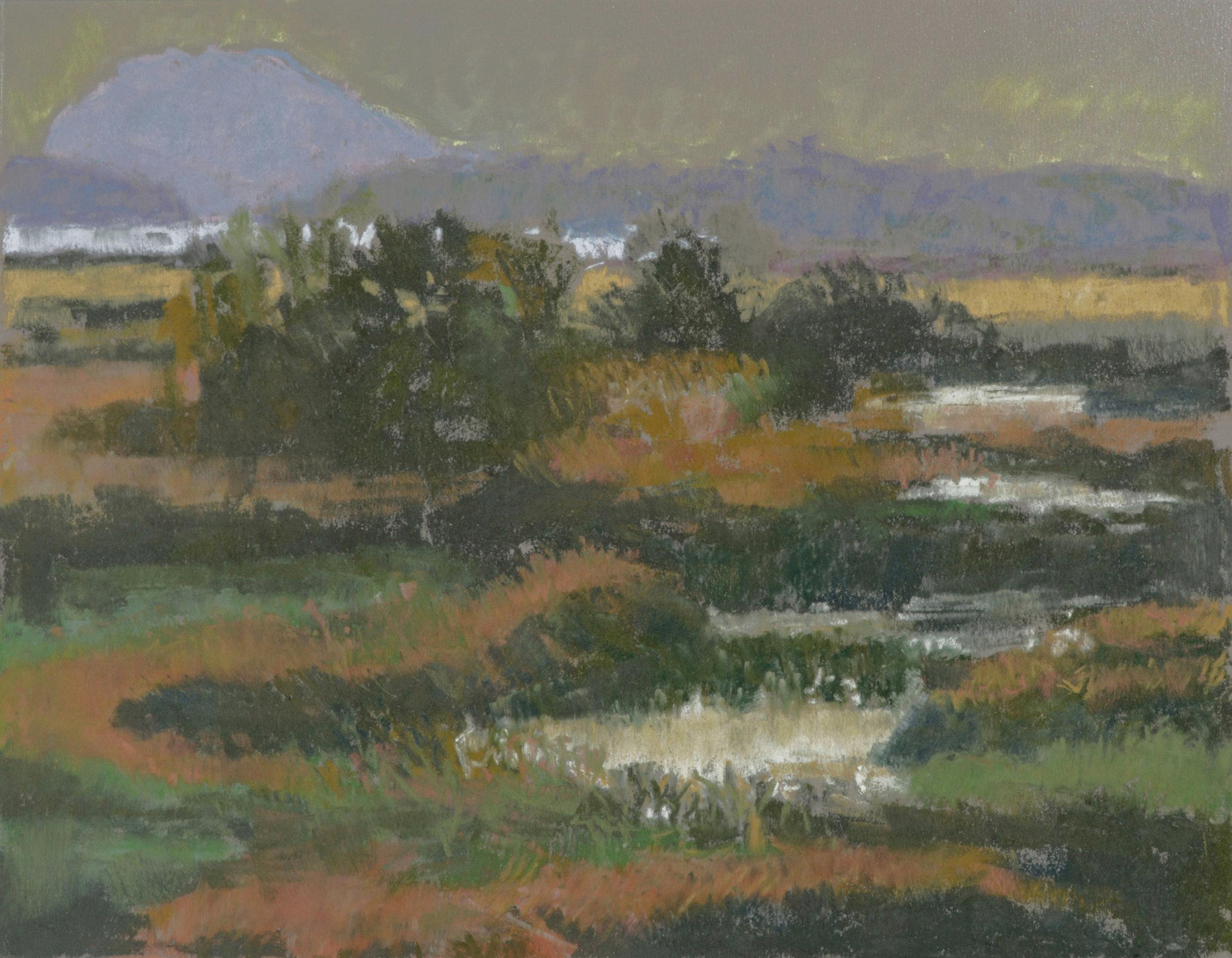 View of Samish and Lummi 12x16 Soft Pastel