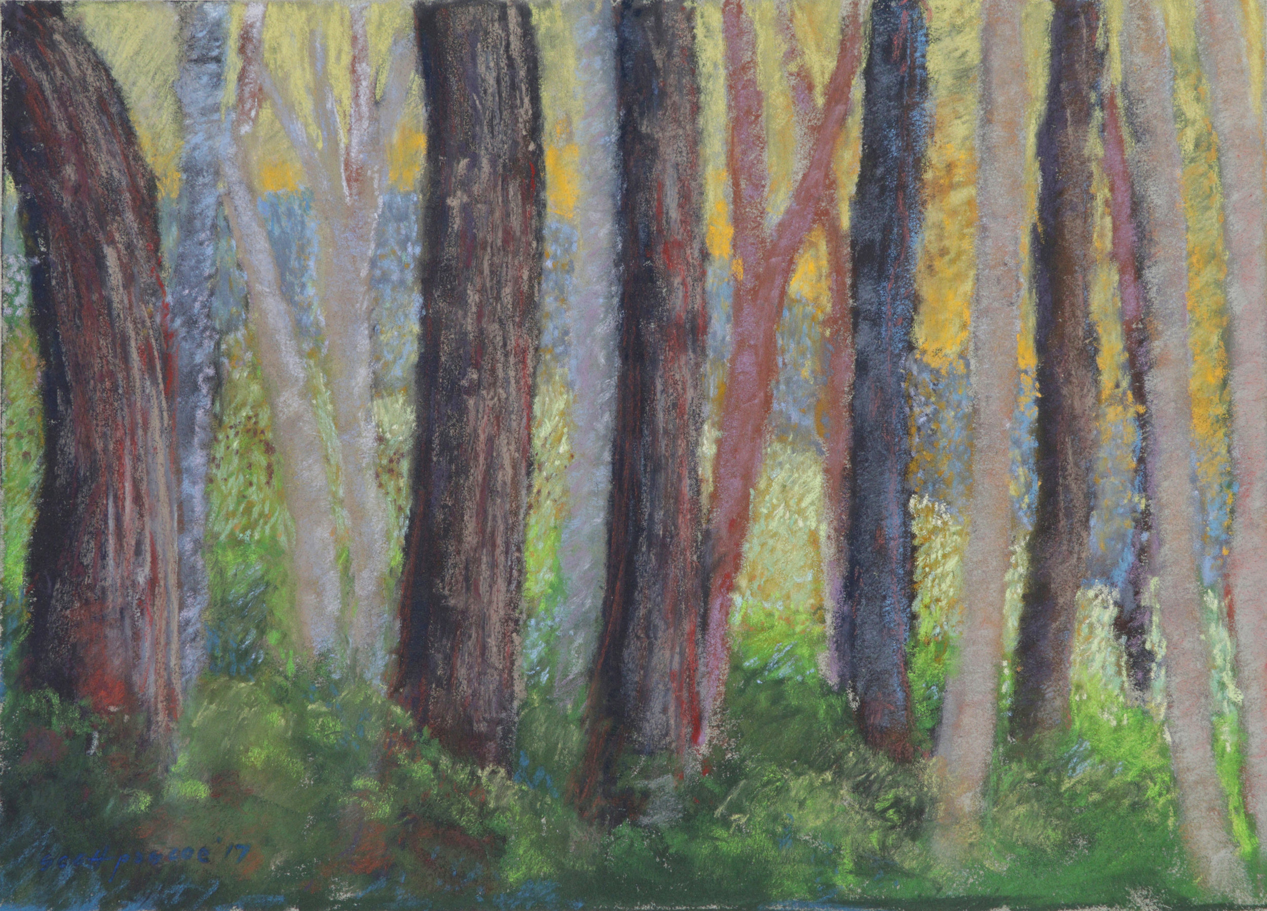Clearing Forest Edge 12x16 Soft Pastel