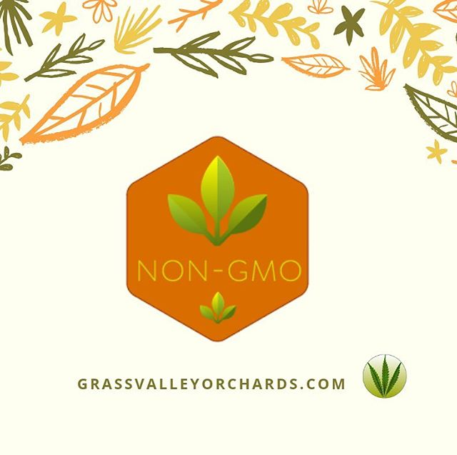Are you a retail store or practitioner who sells #CBD ? Then we know you care about the health of your customers. Want to give them #nongmocbd ? Let's chat! . . . . #cbdwholesale #cbdoilwholesale #cbdheals #cbdisolate #cbdproducts #cbdsalve #cbdtincture #cbdoliveoil #cbdrecipes #cbdforpain