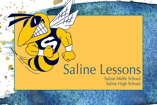 saline lessons.png