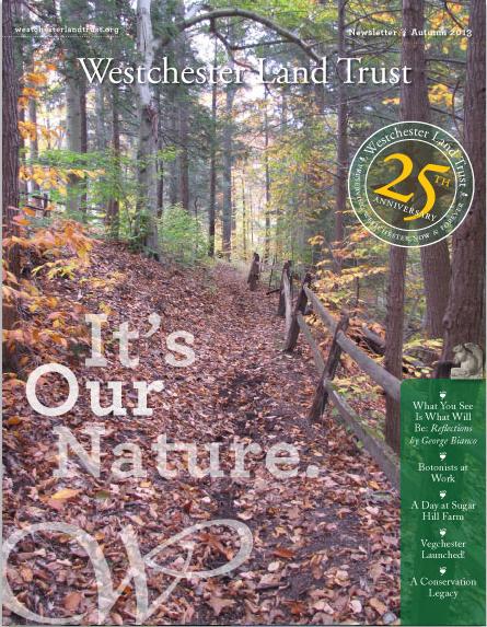 WLT.cover.fall.jpg