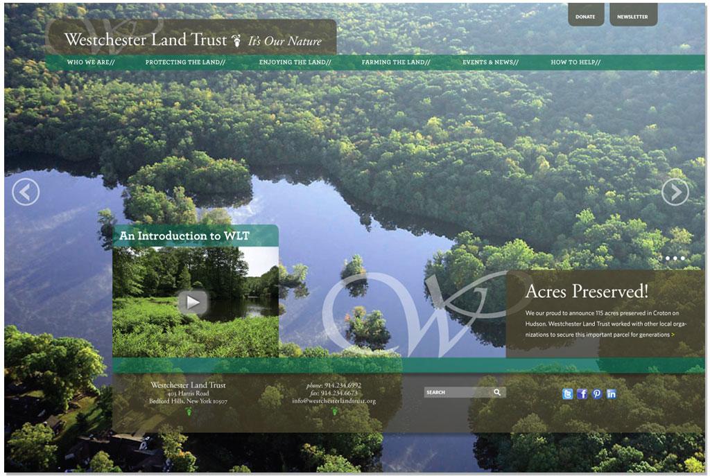 WLT-website-home-1.jpg