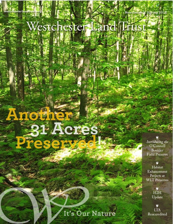 WLT-Newsletter-Spring-15-1.jpg