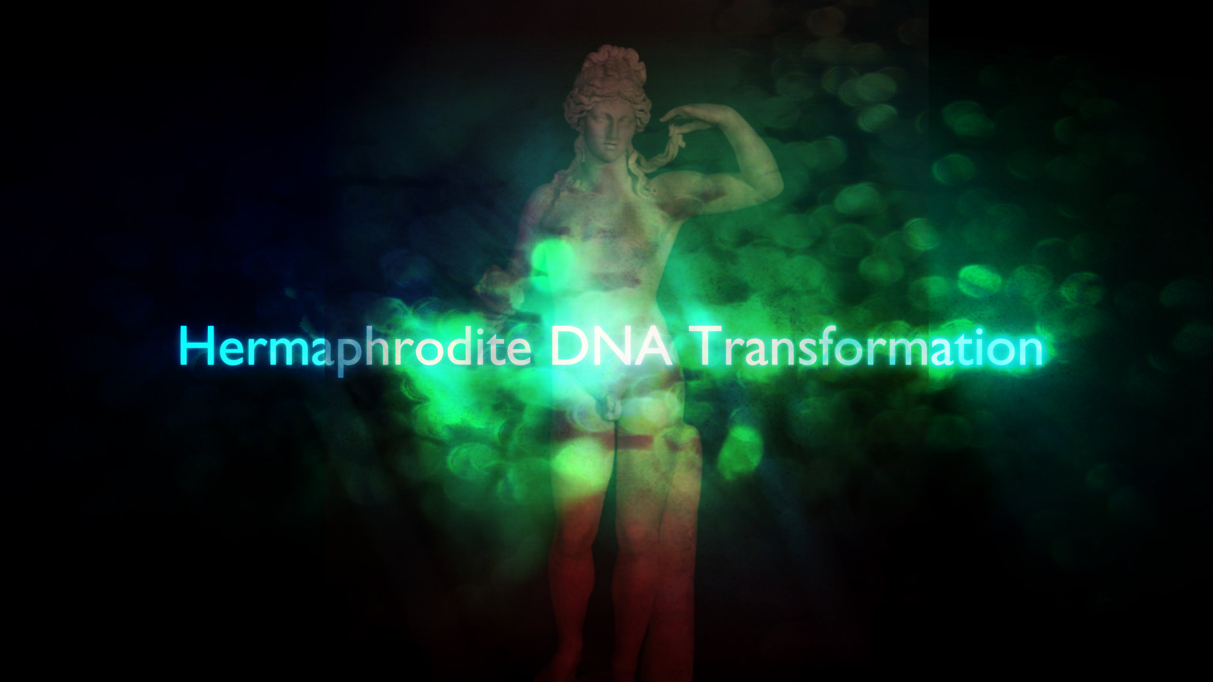 Hermaphrodite_DNA_Transformation.jpg
