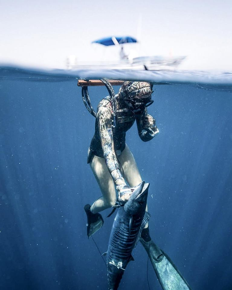 Valentine-Thomas-spearfishing-woman-diver-diving-wahoo-tuna-offshore-waypoint-tv-joe-rogan-experience-podcast.jpg