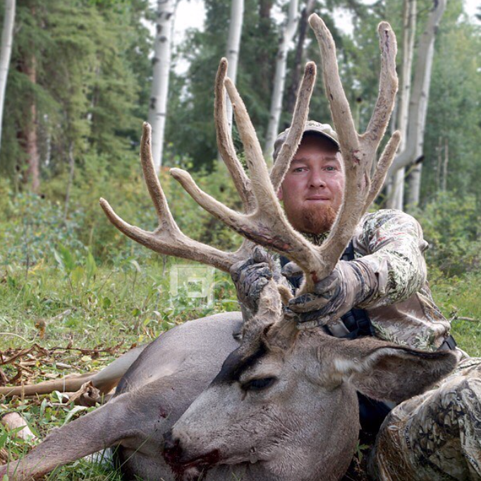 Guy Eastman breaks down the process for scoring a trophy mule deer.