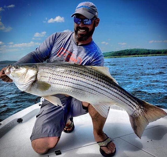 Nothing better than a day spent on the water catching stripers like these 👍👍 Follow @waypointtv.fishing for the best fishing content on Instagram! – Watch @jpderoseoutdoors on Breaking Boundaries streaming anytime @waypointtv #Waypoint #WaypointTV #WaypointFishing