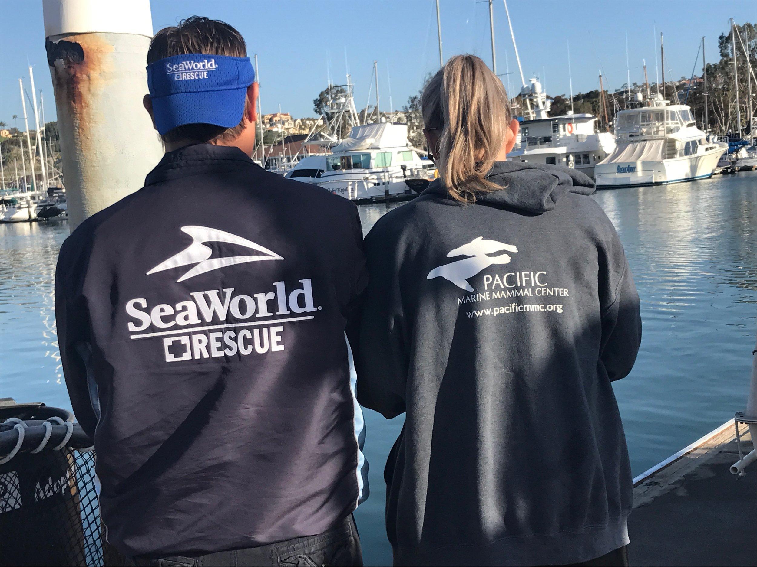 Sea World Rescue