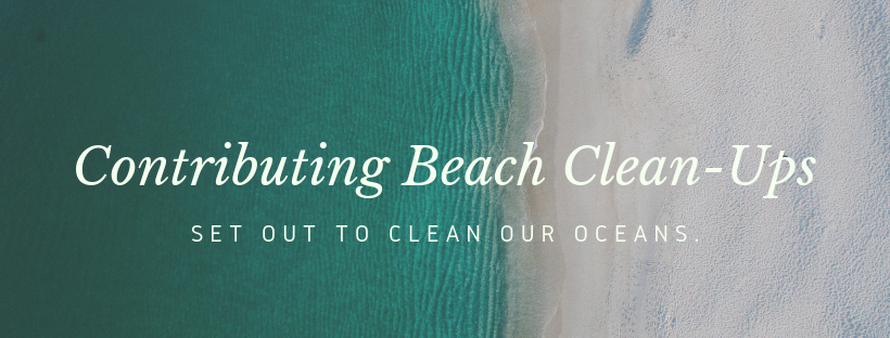 Contributing Beach Clean-Ups (1).png