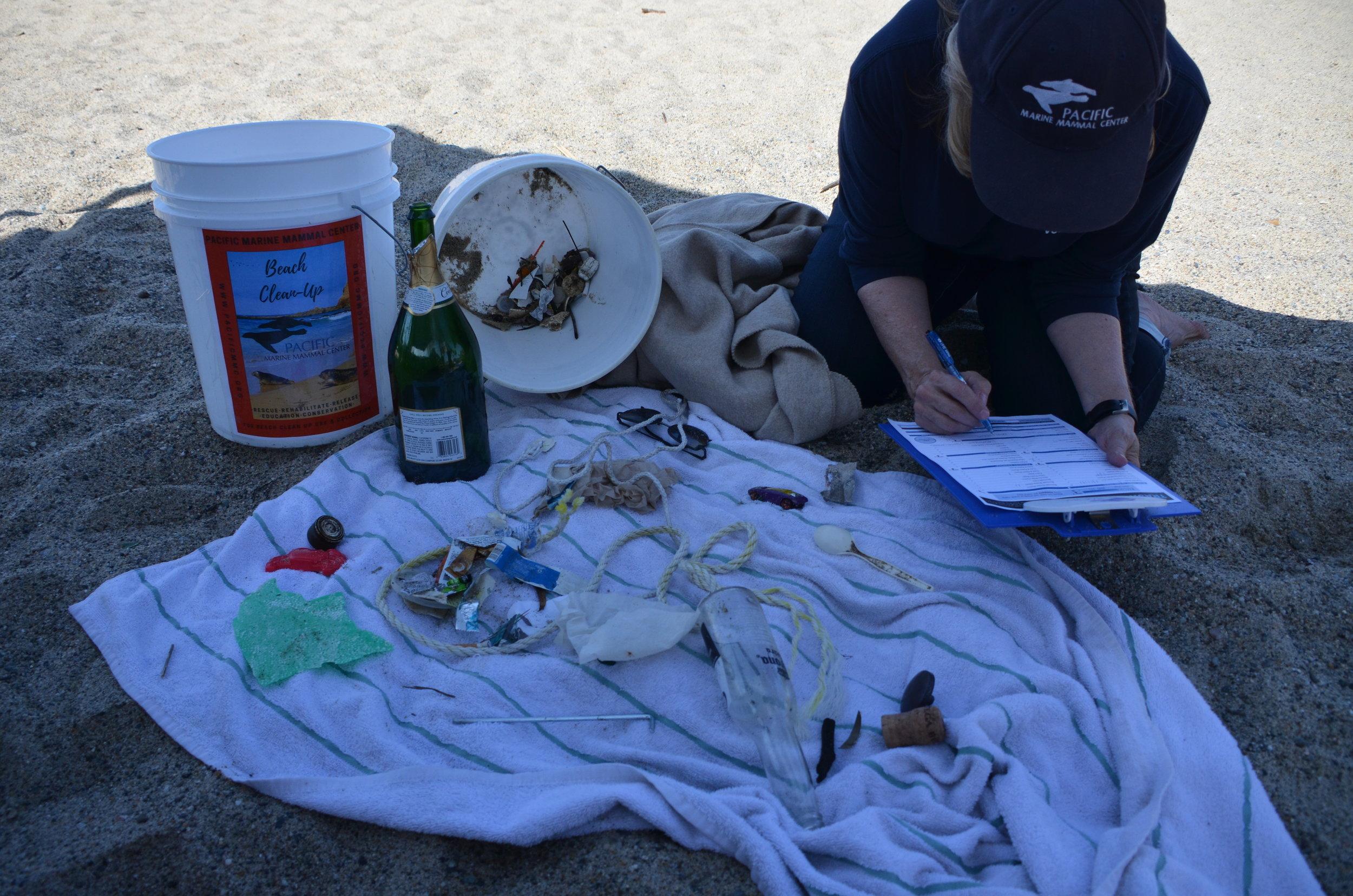 7.24.19 Aliso beach clean up (38).JPG