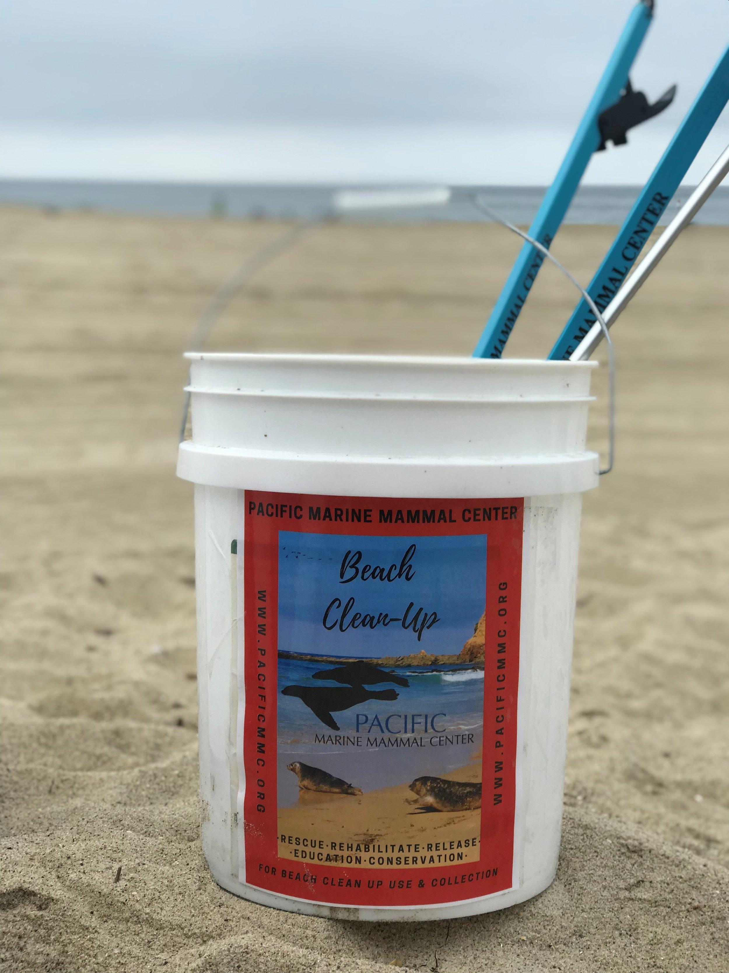 Beach Clean Up 8.27.jpg