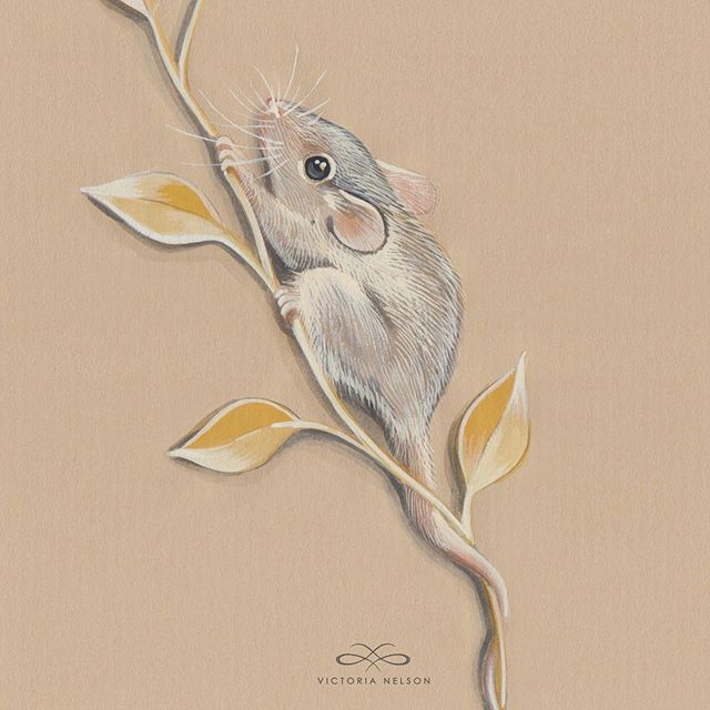 Little field mouse from last year, these are all available as prints in my Etsy and I still have the originals if anyone is interested 🥰