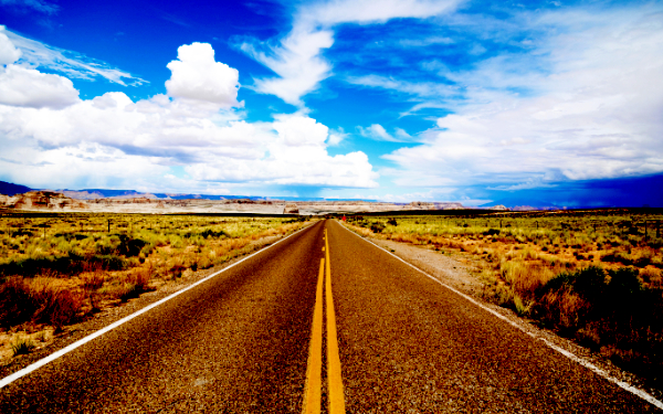 Difficult Journey of the Middle of the Road Executive -