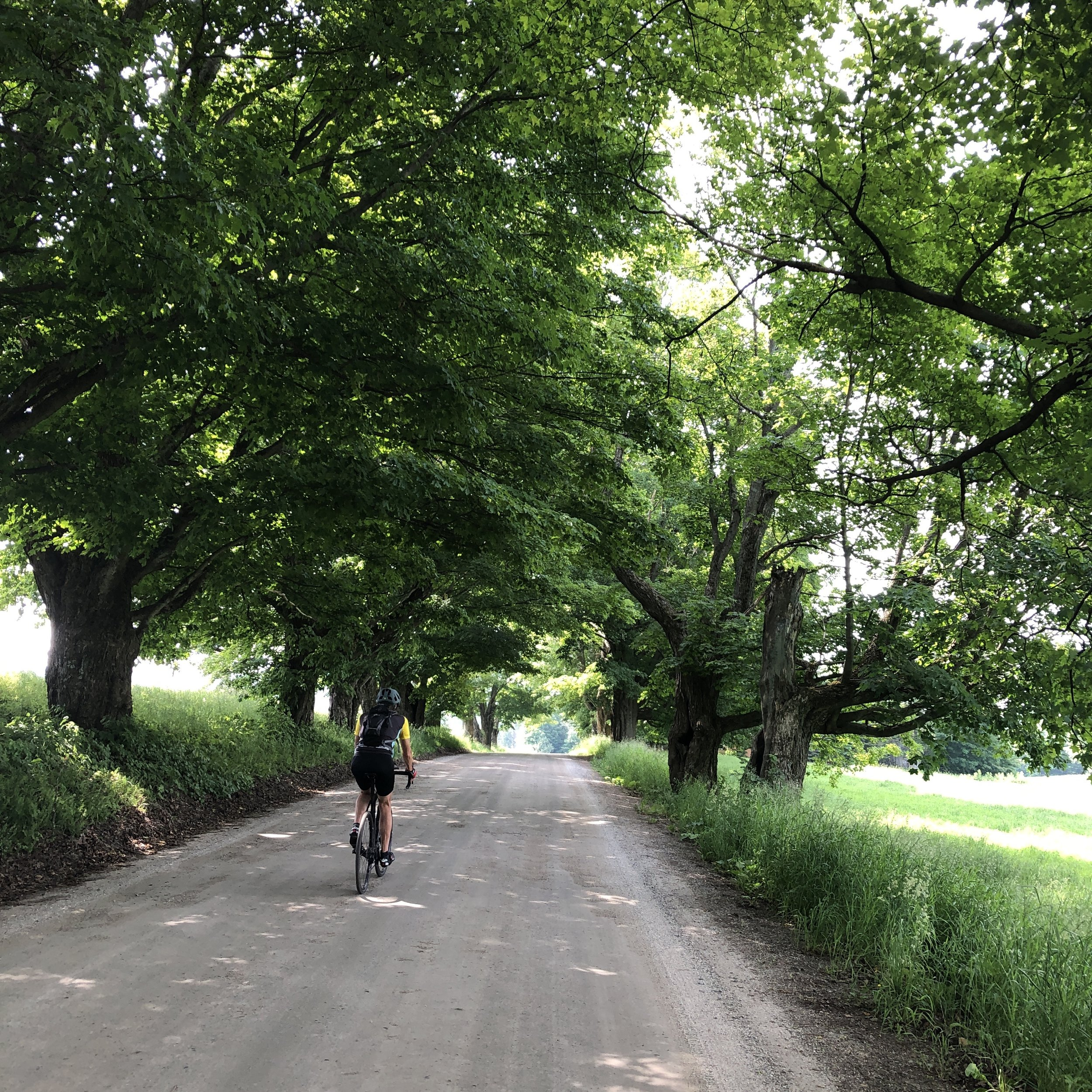 Charming backroads provide scenic secrets and safer conditions for riding.