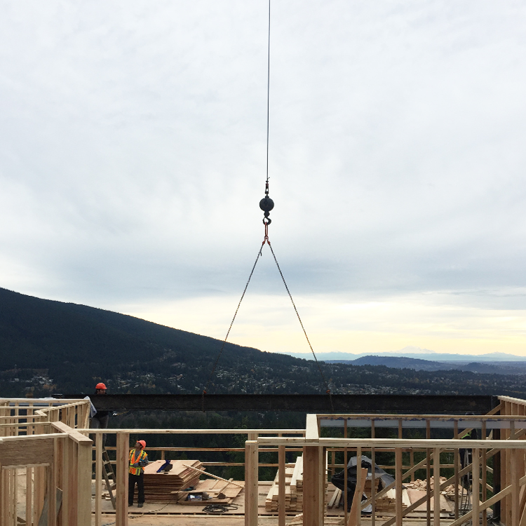 Dundarave crane.jpg