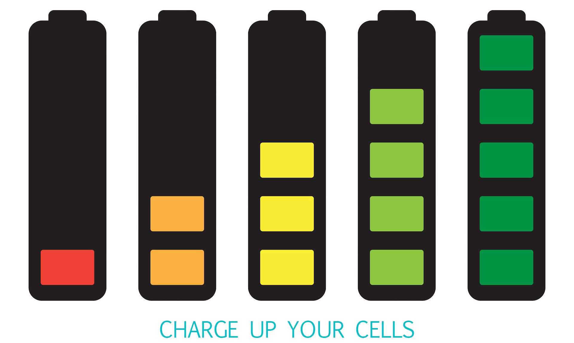 Charge up your cells.png