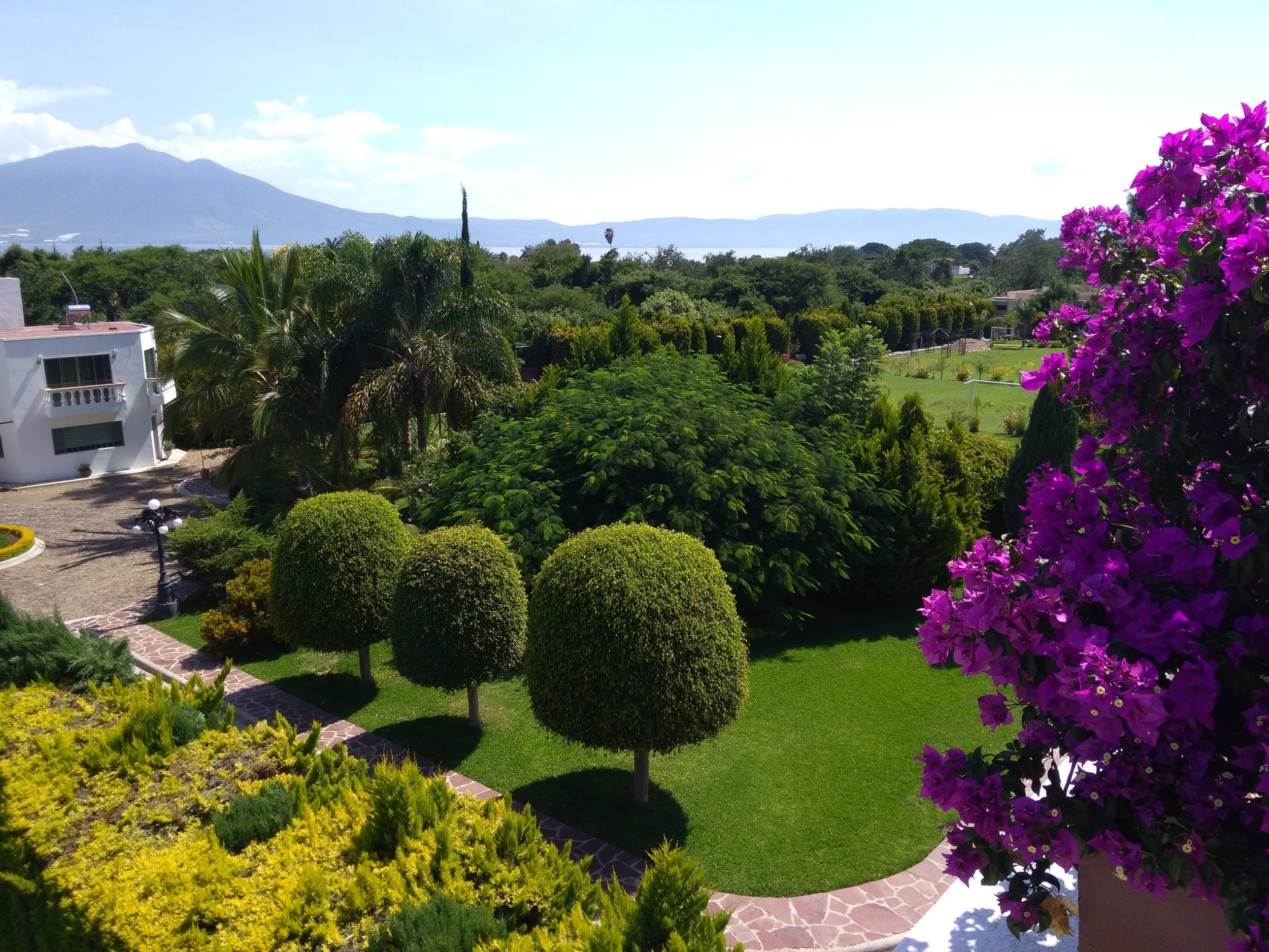 Women's Writing Retreat with Kay Adams ~Feb 3-8, 2019 ~Ajijic, Mexico ~ - Ajijic is 30 minutes from Guadalajara's international airport. Your transport from/to airport is arranged for you. Ajijic has the world's second-best climate, according to National Geographic. A safe and vibrant retirement community popular with Americans and Europeans, Ajijic is the perfect remedy to winter.CLICK BELOW TO LEARN MORE