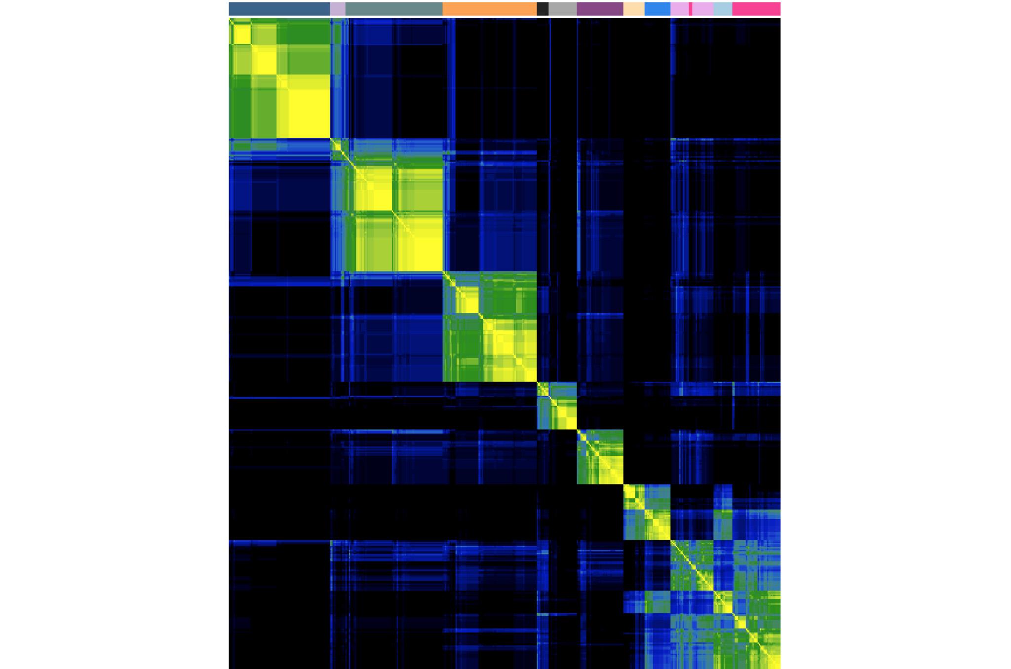 L5 heatmap.jpg