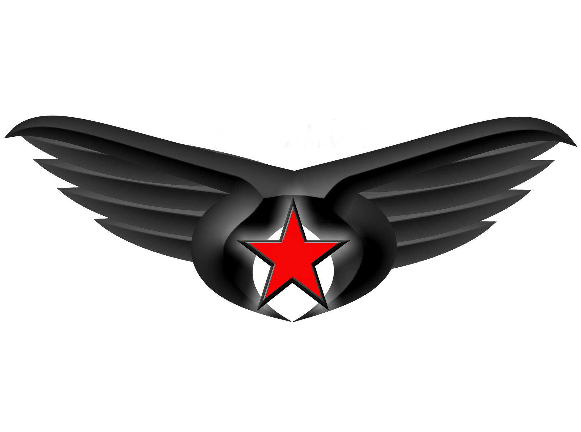 Black Star Ops - Black Star Ops is a product based company that created the first covert clothing company, made by our suppliers to our specifications. HTML 3, integrated separate digital shopping