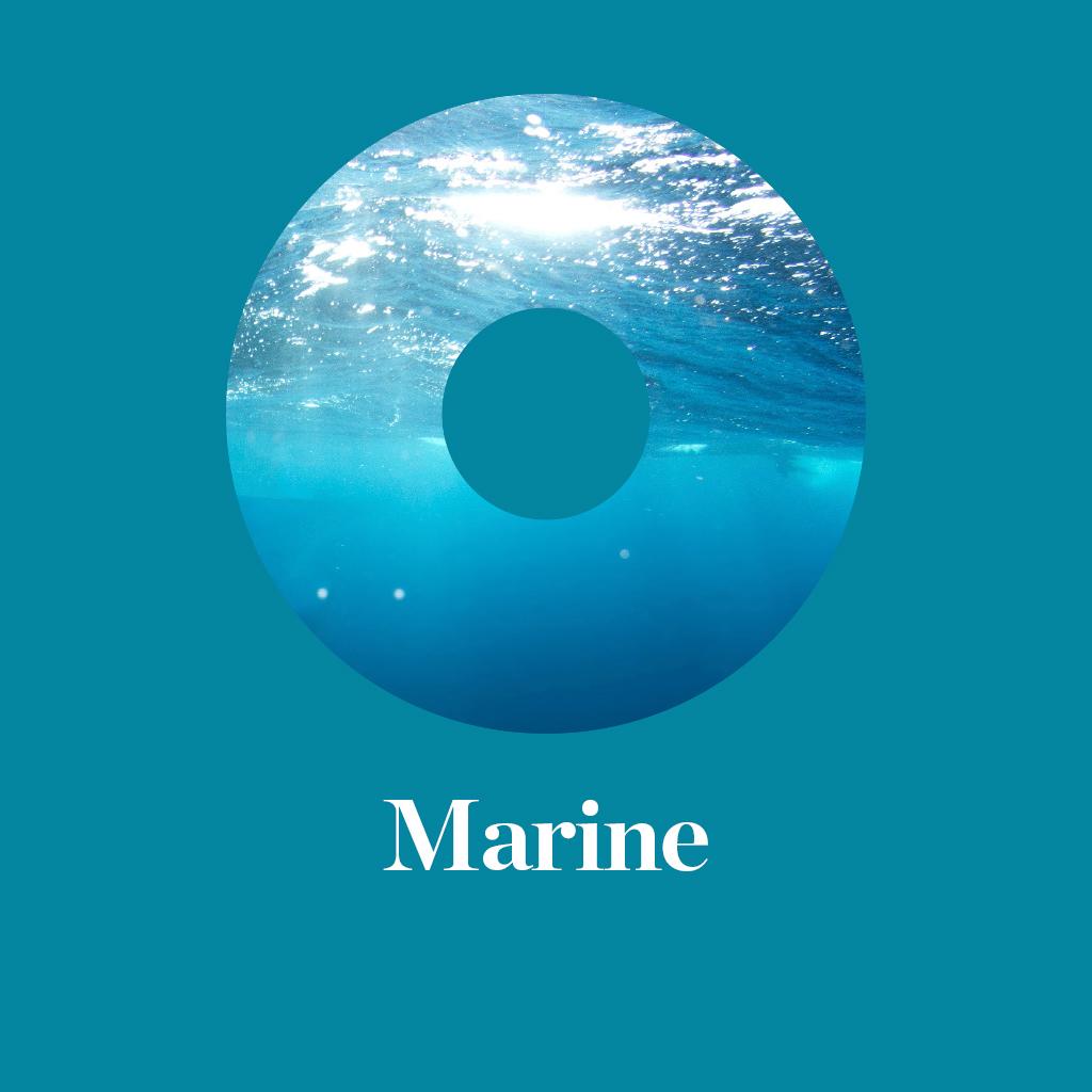 Thumb-Marine.jpg