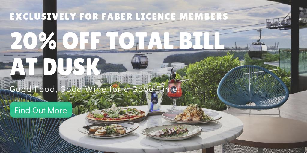 Dusk - Faber Licence Promo.png
