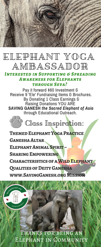 ELEPHANT YOGA AMBASSADOR NEW.png