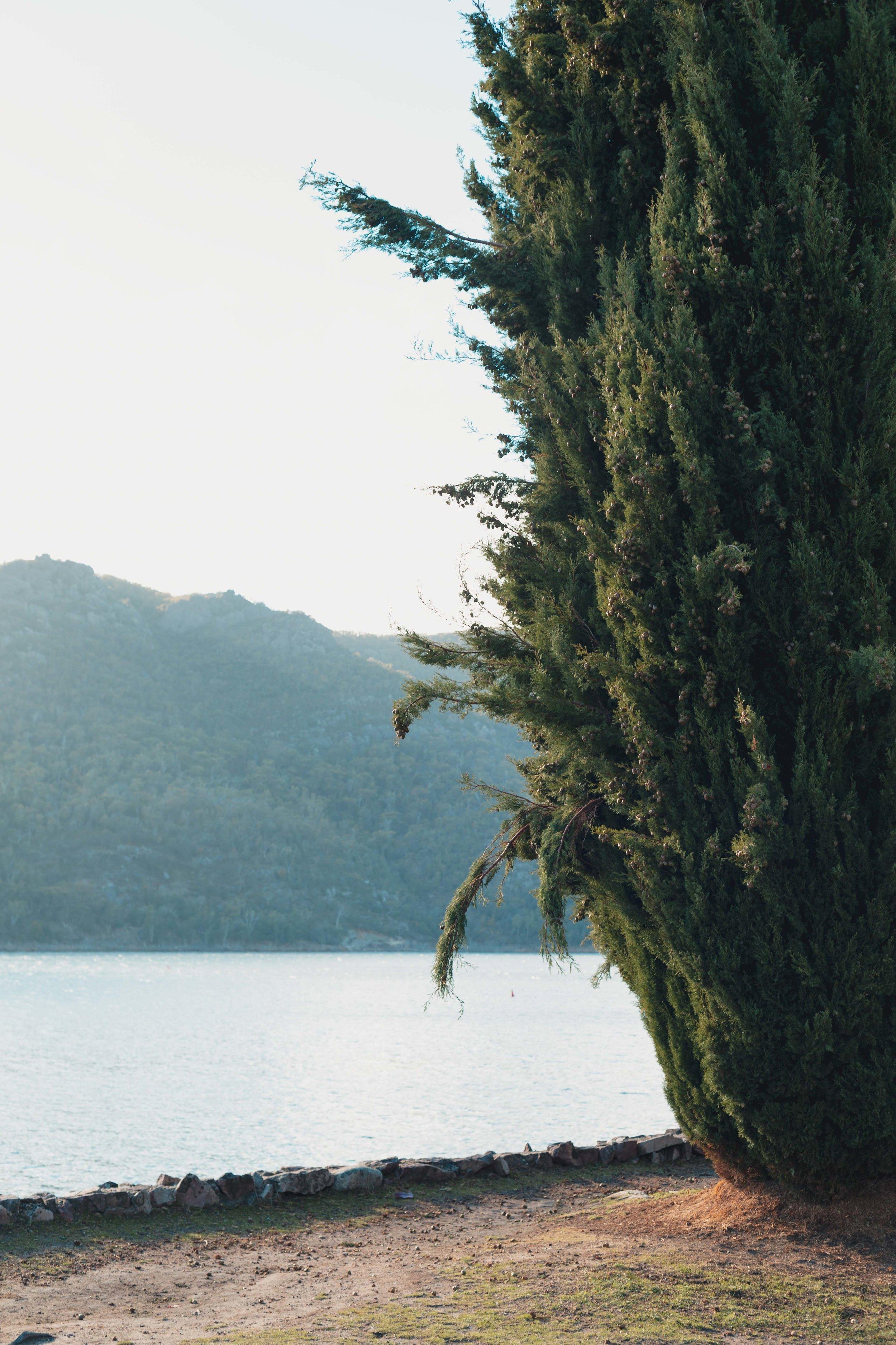 Lakeside at Lake Bellfield - 12.jpg
