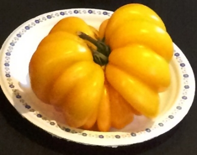 Florentine Beauty:  A beautiful yellow, ribbed beefsteak tomato. I LOVE the look of this tomato!