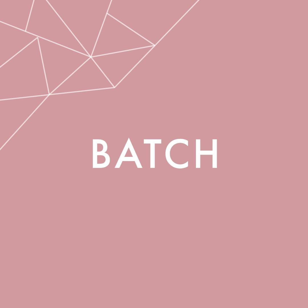 Batch.png