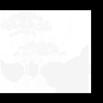 Fotografia_de_casamento_Talking_in_the_Road_casamentonocampo.png