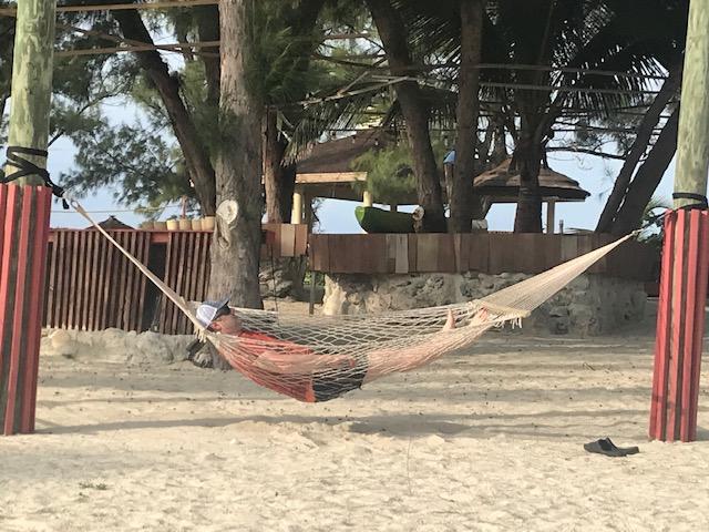 steve hammock.jpg