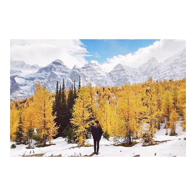 Embracing Canadian Fall // #explorealberta