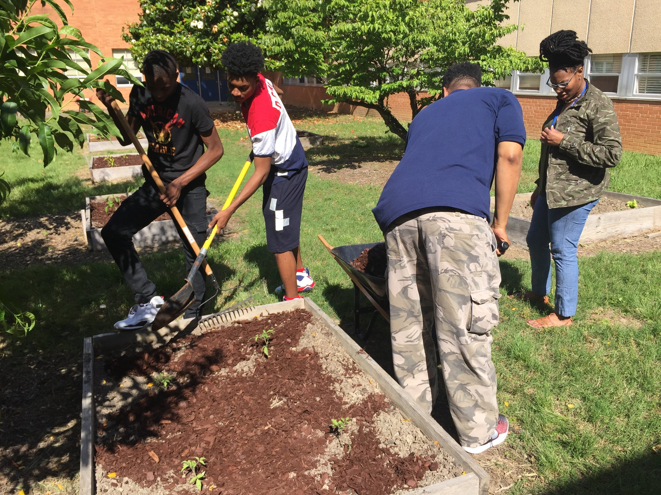 Members of the George Wythe High School basketball team take time to mulch raised beds in the school courtyard, 2017