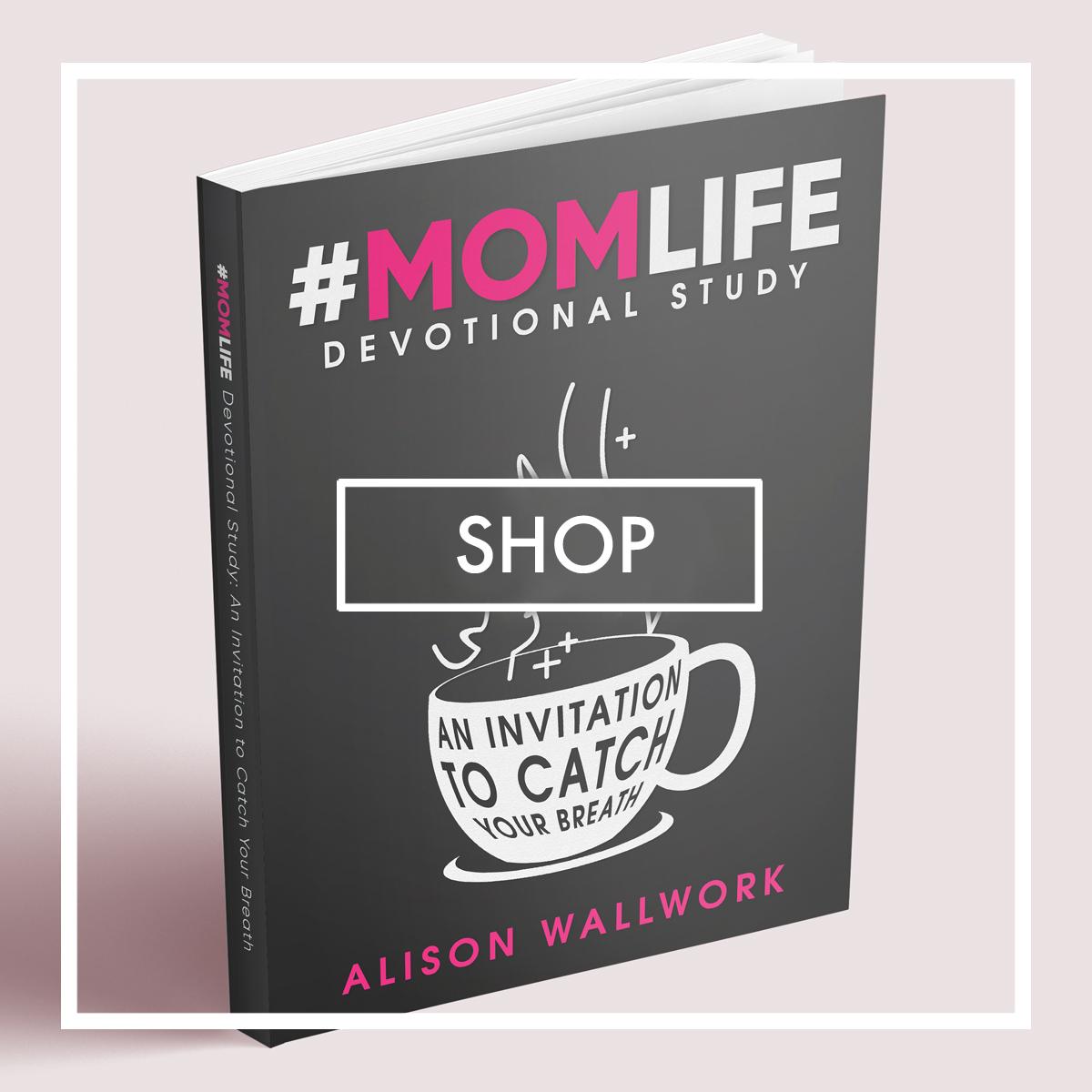 SHOP-ALISON-WALLWORK-AUTHOR-MOMLIFE-BOOK.jpg
