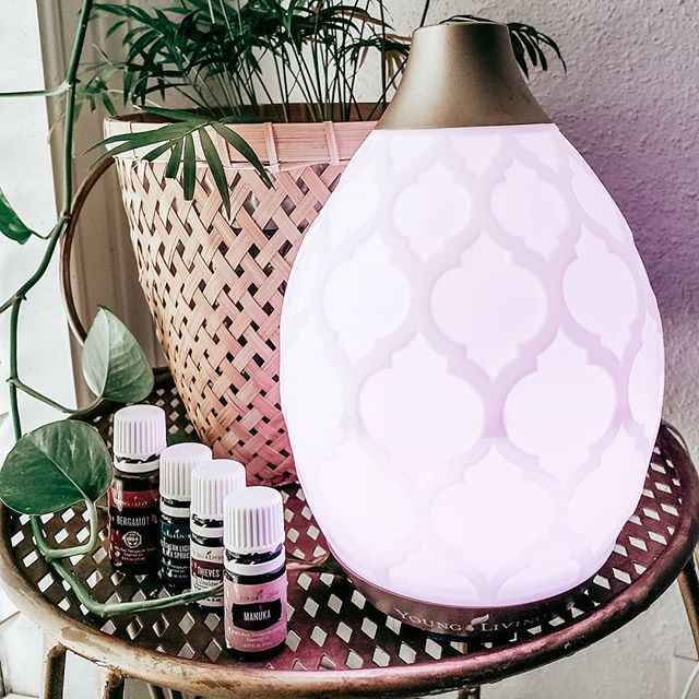 My new favorite diffuser. . . . +3 Drops Munuka (calming) +3 Drops Bergamot (uplifting) +2 Drops NLBS (restful) +2 Drops Thieves (purifying)  You have to try it! 😍  #diffuserblends #wellness #herressentialoiltribe #younglivingessentialoils