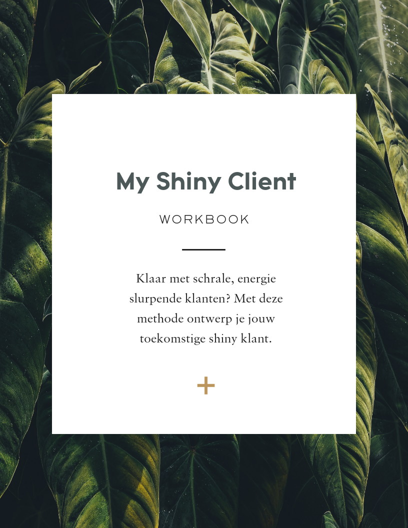Shiny Client e-book