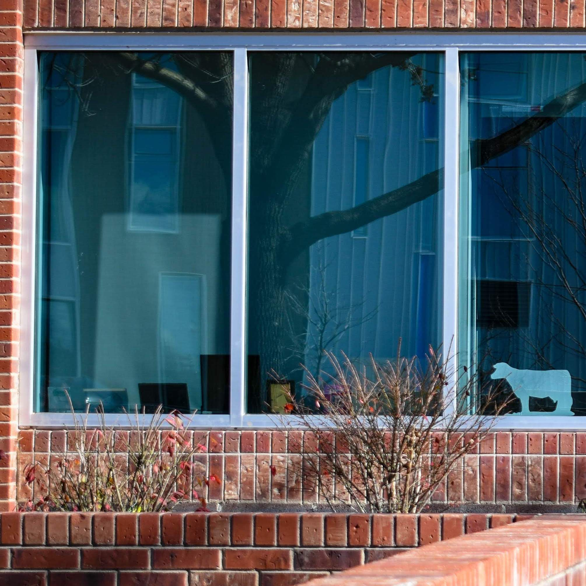 Tinted Glass - A colorant is added to clear glass to give it a tint. The tinting increases protection from sun exposure and enhances thermal efficiency. Common shades are bronze and gray, with gray being slightly more thermally efficient.