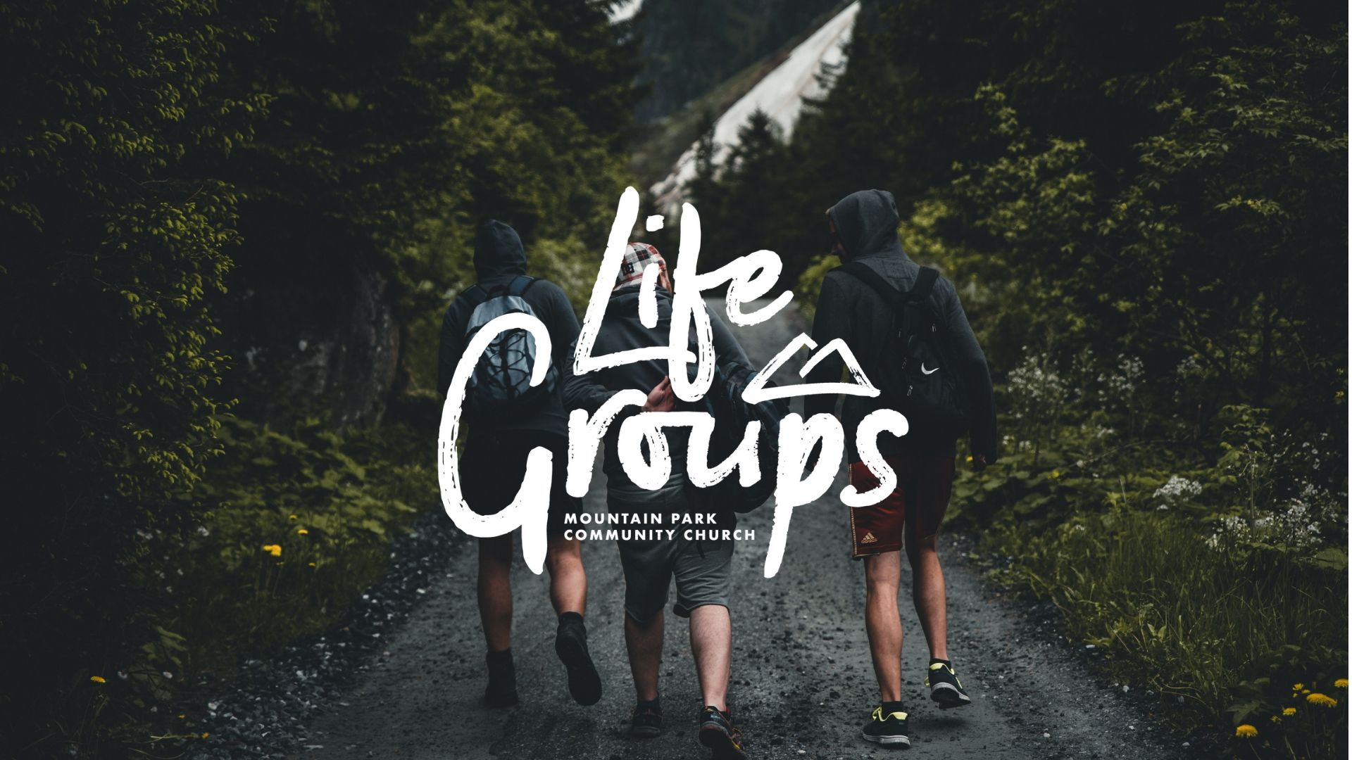 Copy of life groups cover.jpg
