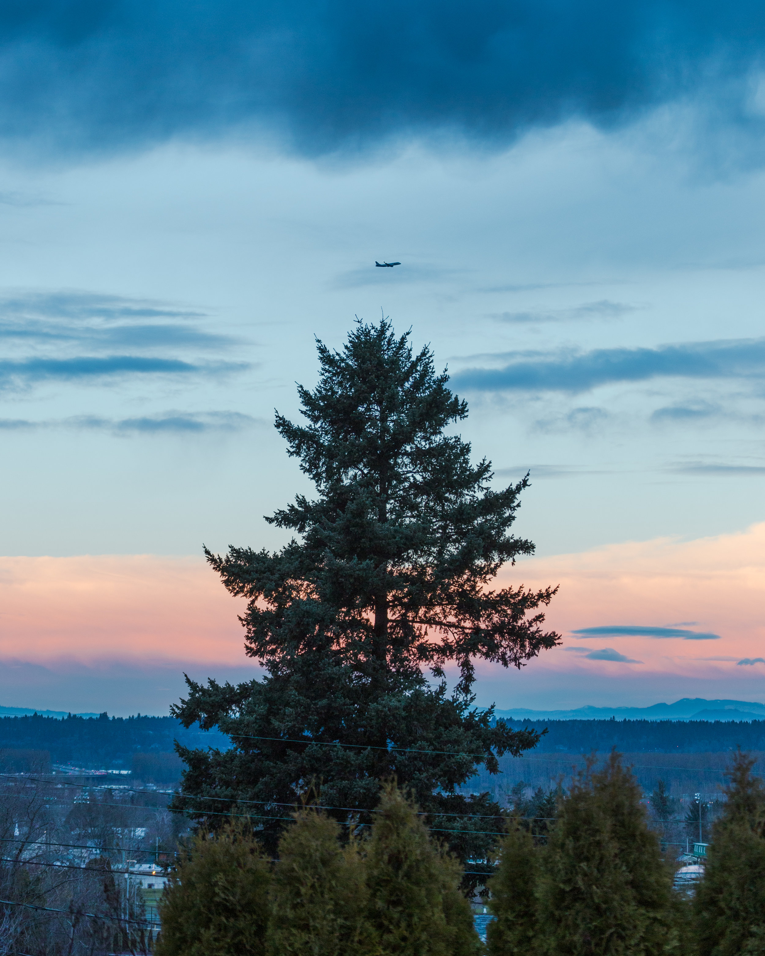 Oregon Hikers -