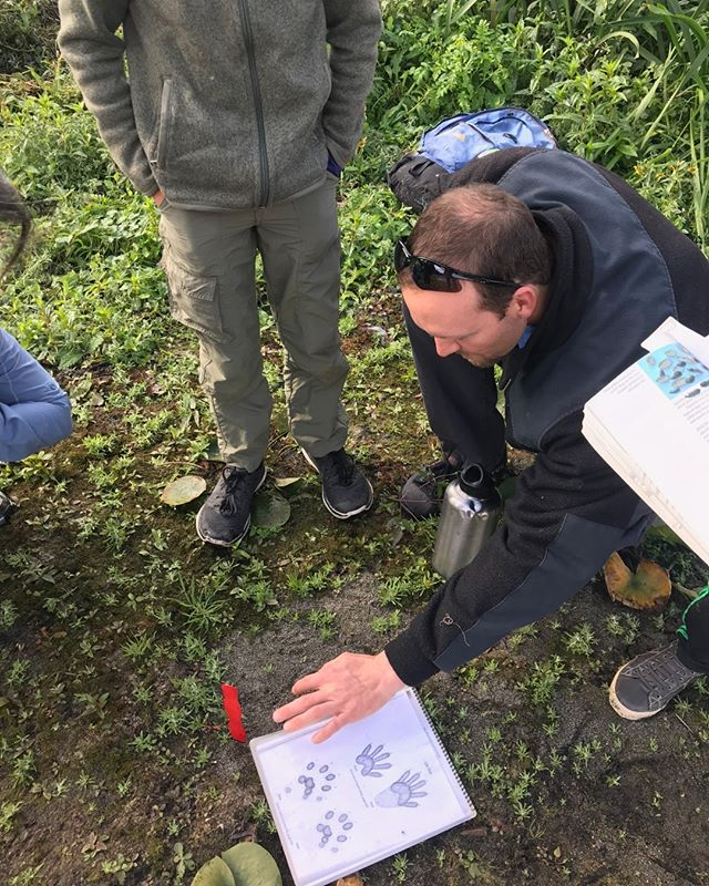 Need a last minute Father's Day Gift? Looking for something to do this Sunday? Interested in learning about the tracks animals make and the signs they leave behind?  Join us for our Intro to Wildlife Tracking Class! Take $17 off with code TRACK40 at checkout. We will be meeting at Captain William Clark Regional in Washougal, WA at 9am on June 16th. See you there! #treesongnatureawareness #explorewashington #mycamas #camaswa #washington #pnwnature #washougalriver #washougal #camas #pnwonderland #thatpnwlife #pnwwilderness #pnwlifestyle