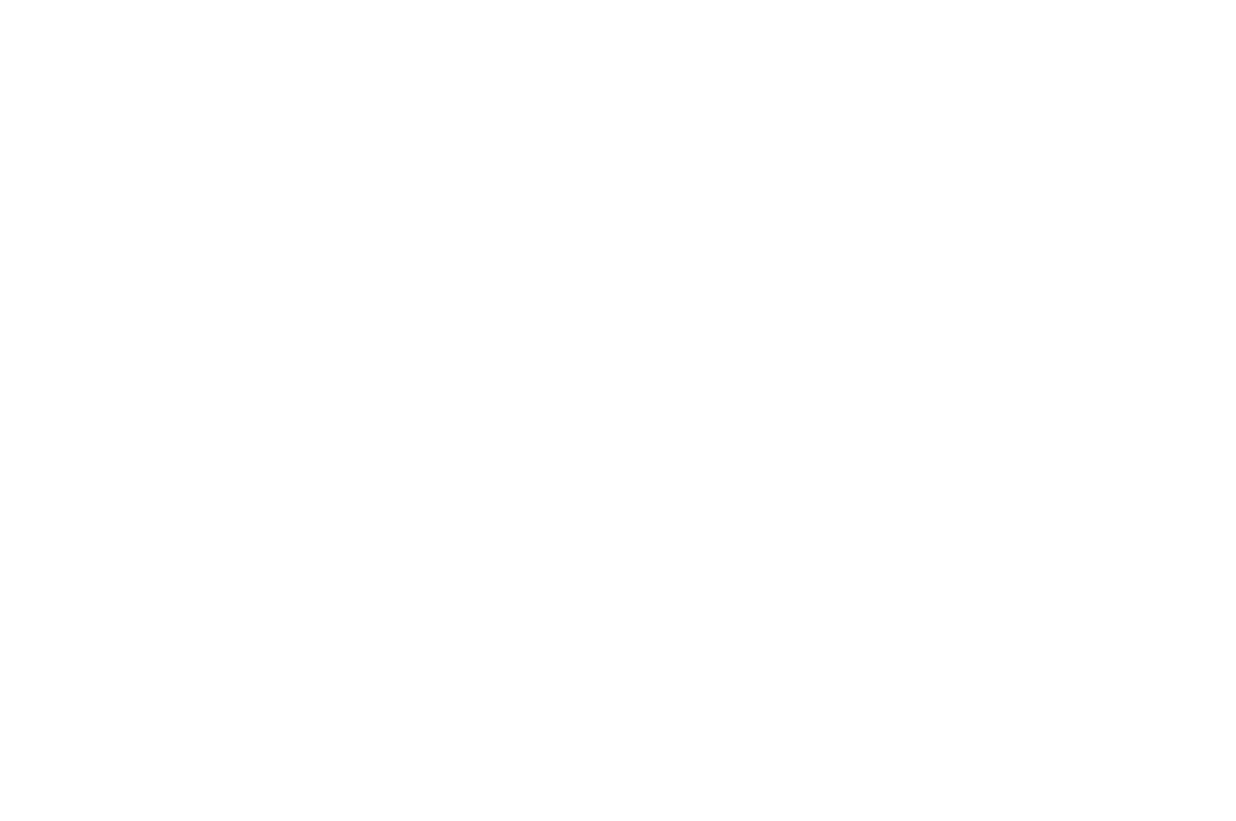 OFFICIAL SELECTION - The Psychedelic Film and Music  Festival - 2018 (1)_low_opacity.png