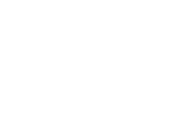 OFFICIAL SELECTION - Denver Underground Film Festival - 2018 (1)_71opacity.png