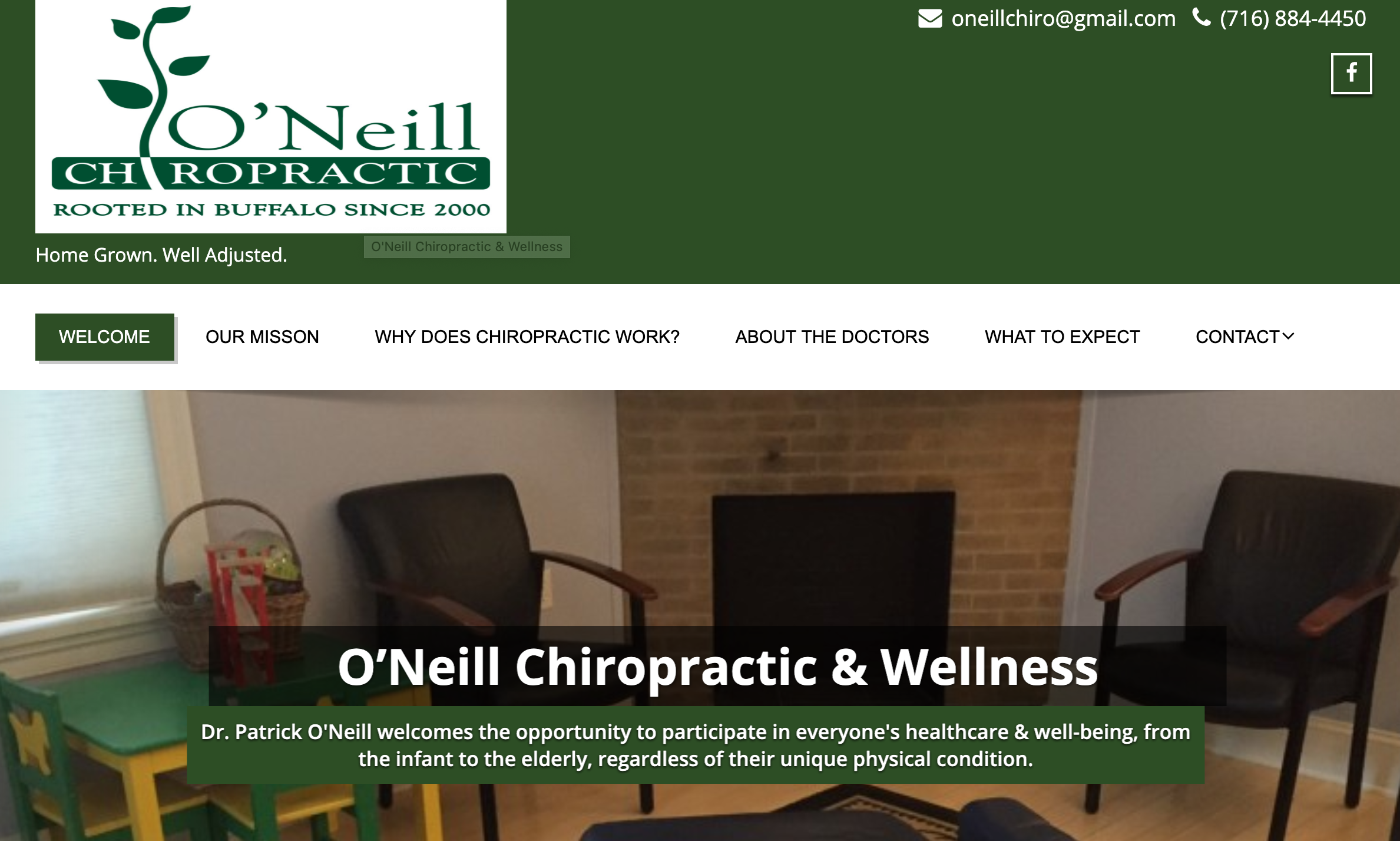 Chiropractic services (webster certified)
