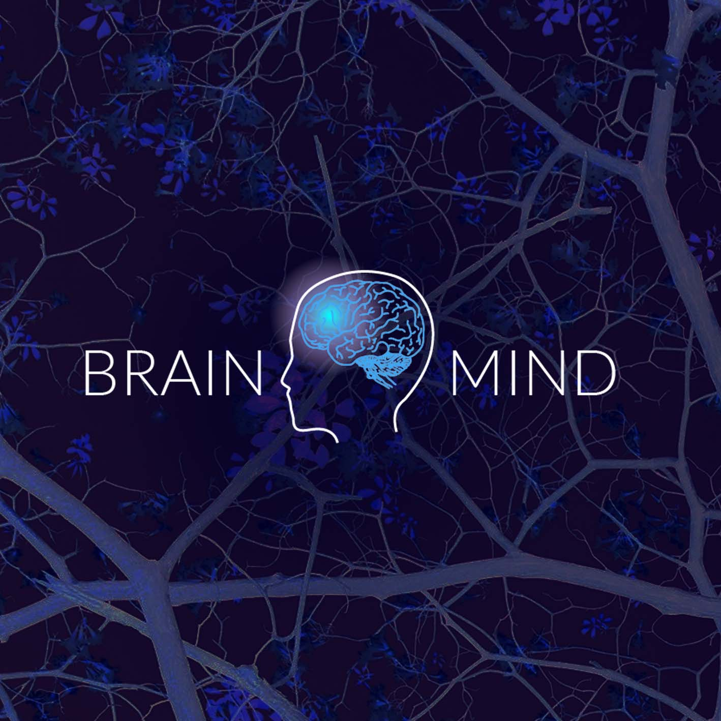 BRAINMIND - A vibrant neuroscience ecosystem bringing together the top scientists, entrepreneurs, investors, and philanthropists in seeking to accelerate impactful innovation within the science of the brain and mind