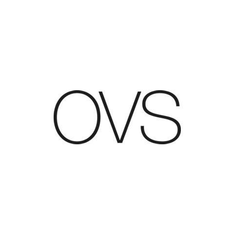 OVS_logo.jpg