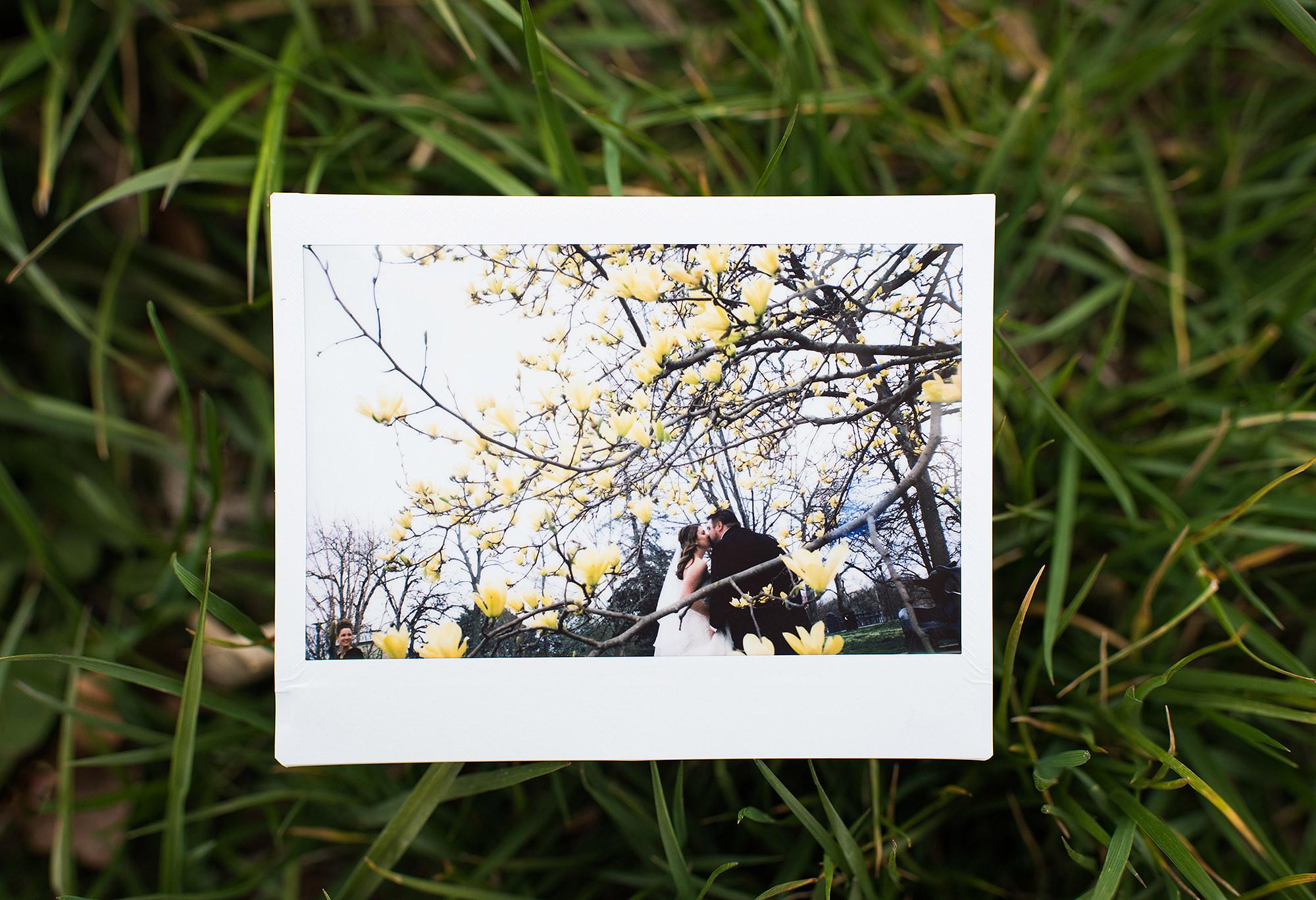 1-sarah-corbett-photography-polaroids-bride-groom-yellow-magnolia-st-louis-wedding.jpg