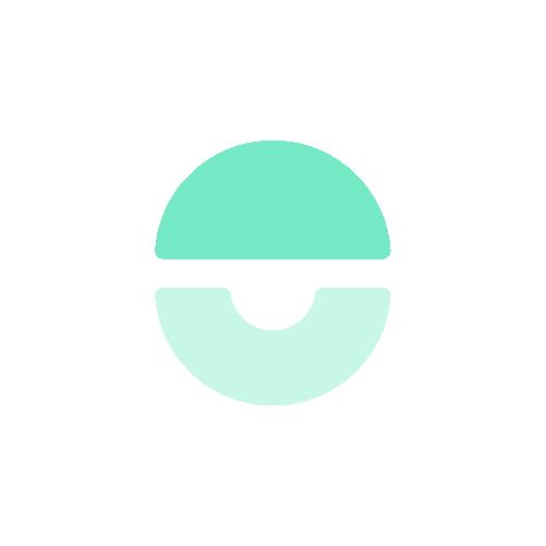icon_org seafoam@2x.png